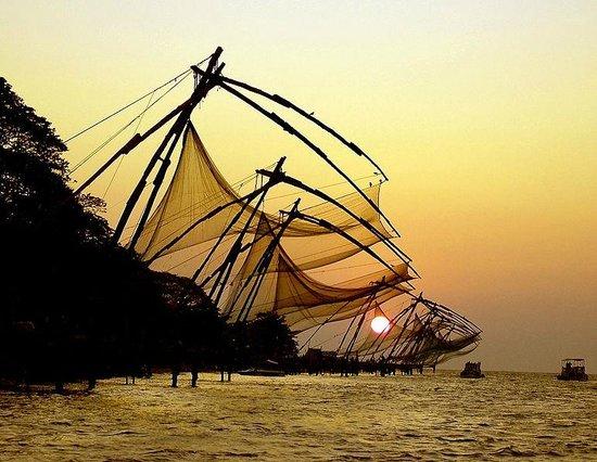 Jose Farms: Cochin Estuary