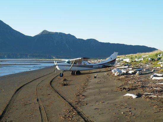 Alaska Bear Adventures: landing on the beach