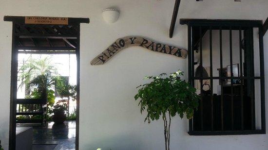 Posada Piano y Papaya Los Roques : Hotel Front