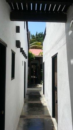 Posada Piano y Papaya Los Roques : Habitaciones
