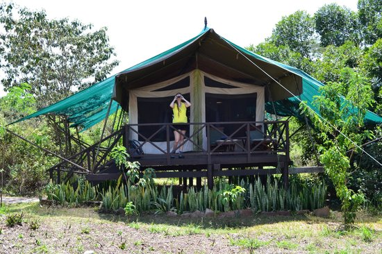 Mara Intrepids Luxury Tented Camp: Unser Zelt