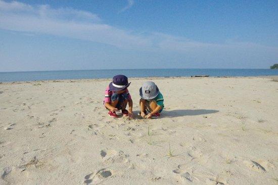 Palm Beach Resort & Spa: white sandy beach
