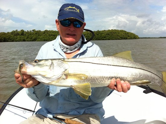 MudPuppy Fishing Charters: Flamingo snook on fly