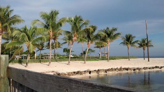 Portion of Sombrero Beach from dock