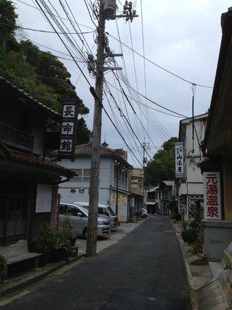 Yunotsu Onsen: 山県屋の向かいにあるのが薬師湯