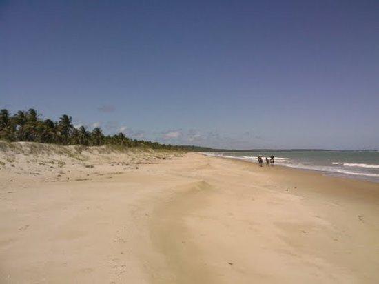 Coruripe, AL: litoral sem fim.