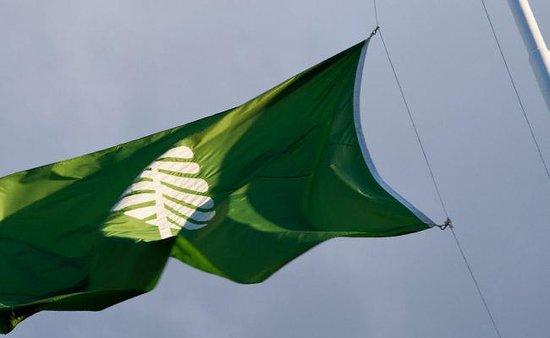 Dartmouth College : Dartmouth flag