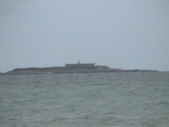 Sainte Mere Eglise: Island off D421