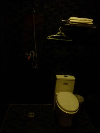 Chengdu Flipflop Lounge Hostel : Shower very close to the toilet
