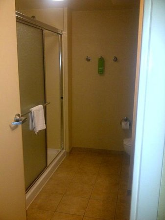 Hampton Inn & Suites National Harbor/Alexandria Area: Smaller but functional bathroom
