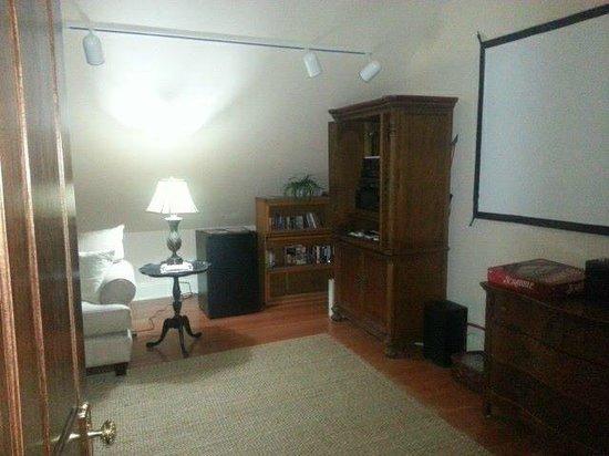 Heron Cove Bed & Breakfast at Silverstream Plantation : Movie Room