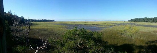Heron Cove Bed & Breakfast at Silverstream Plantation : View behind the house over the marsh