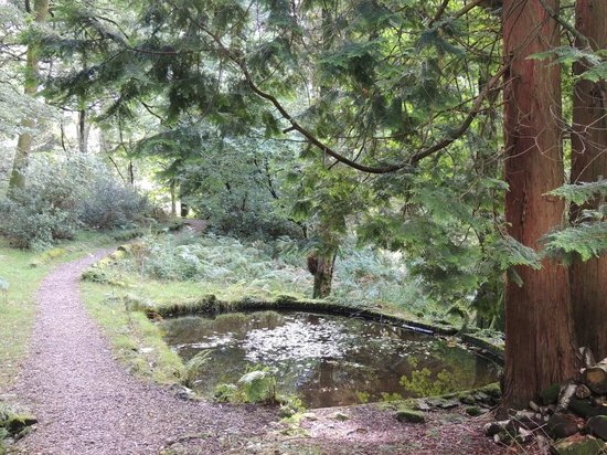The Lancrigg: One of the paths through the grounds