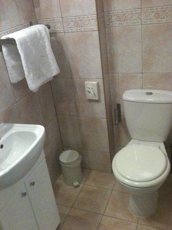 Comfort Inn London - Edgware Road: Sink/toilet