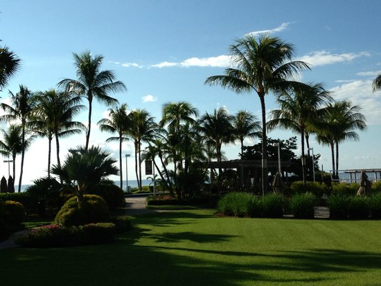 Hyatt Windward Pointe: A view of the grounds