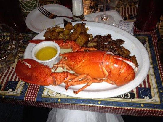 Stewart's Restaurant & Tavern Seafood: Lobster!