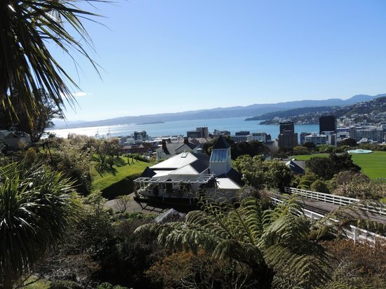 Wellington Cable Car: Fantastic views from the top.