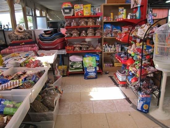 Pet Shop Picture Of Duck Pond Market Paphos Tripadvisor