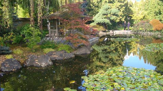 Kasugai Japanese Garden: Nice greenery..