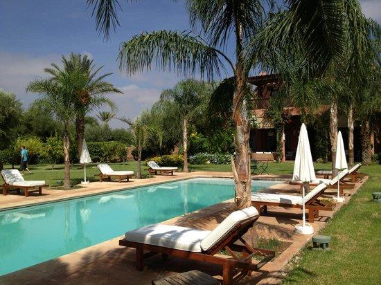 Villa Jardin Nomade: De la piscine