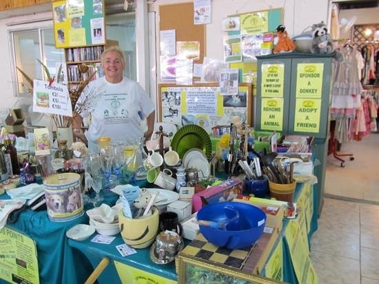 Duck Pond Market: Charity Stall