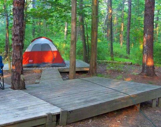 Camp Taylor: campsite