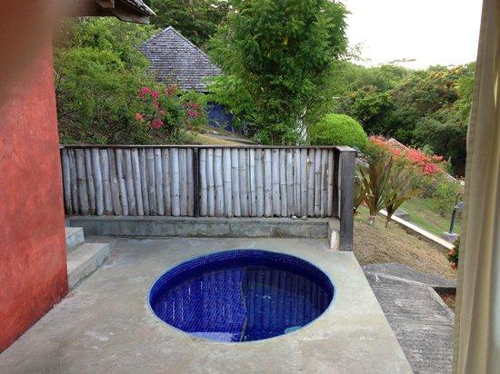 Laluna Hotel : Plunge pool