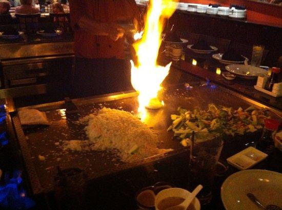 Shogun: Onion volcano (YAWN)