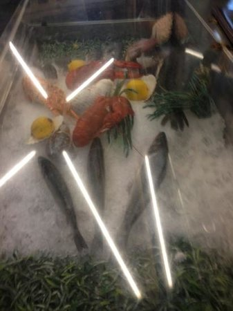Roma: fresh seafood offerings