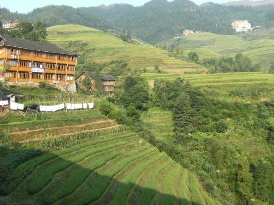 Long Sheng's Dragon Spine Rice Terraces: guesthouse at longi rice terrace