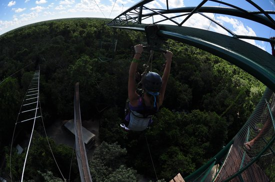 Selvatica: Tarzania Human Roller Coaster