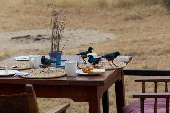 Tarangire River Camp: Frühstück