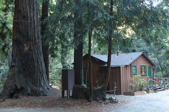 Ripplewood Resort: chalet no.8