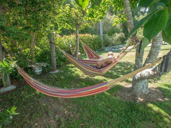Anakiwa 401: Our Hammock Garden
