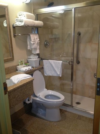 Hotel Central Fifth Avenue New York: Small, clean, adequate bathroom