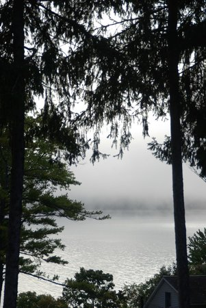 Bayside Inn & Marina : View from our room, looking to the lake with mist rising