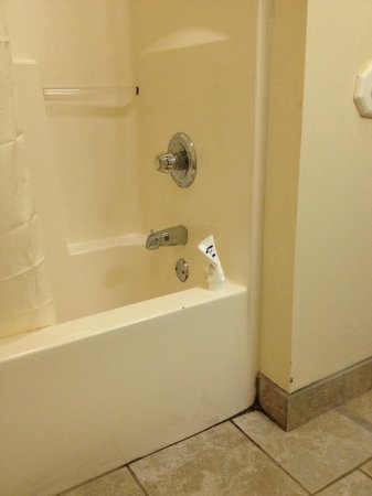 Quality Inn: Shower/tub - notice grout in bottom right corner, dirt on bottom of tub.