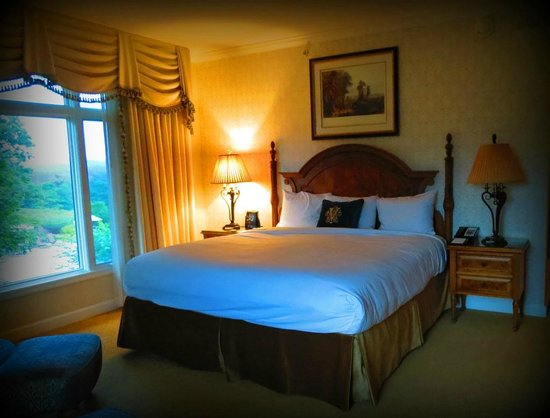 Biltmore Village Inn : Our room