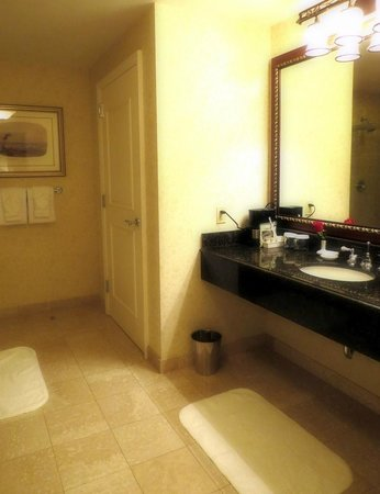 Biltmore Village Inn : HUGE bathroom