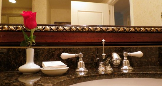 Biltmore Village Inn : Bathroom Sink