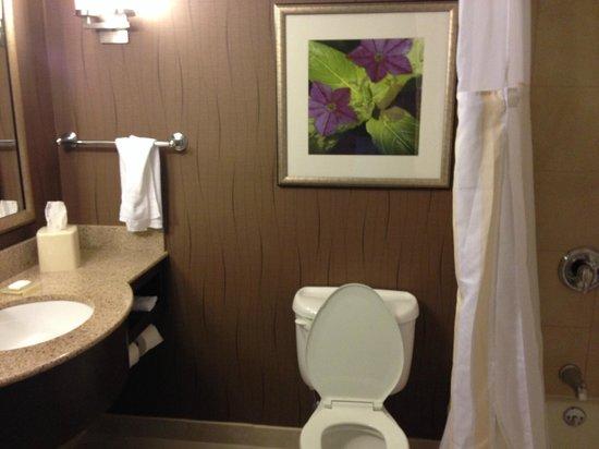 Hilton Garden Inn Hartford North/Bradley Int'l Airport : Bathroom