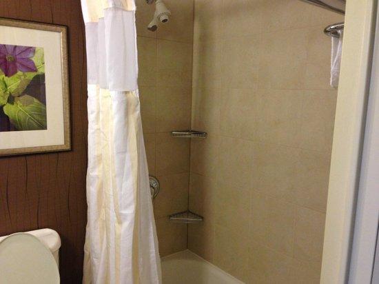 Hilton Garden Inn Hartford North/Bradley Int'l Airport: Shower