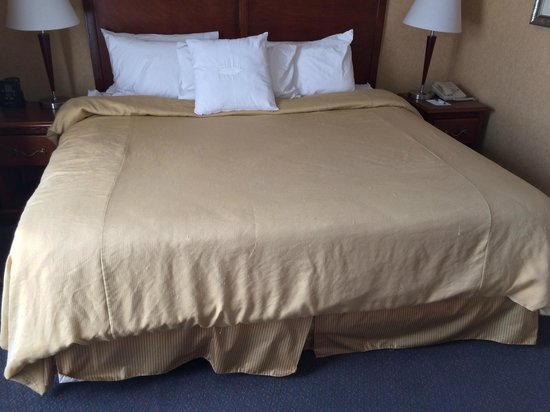 Homewood Suites Brighton: Room 238 - Worn & wrinkled bedspread...note picks & runs