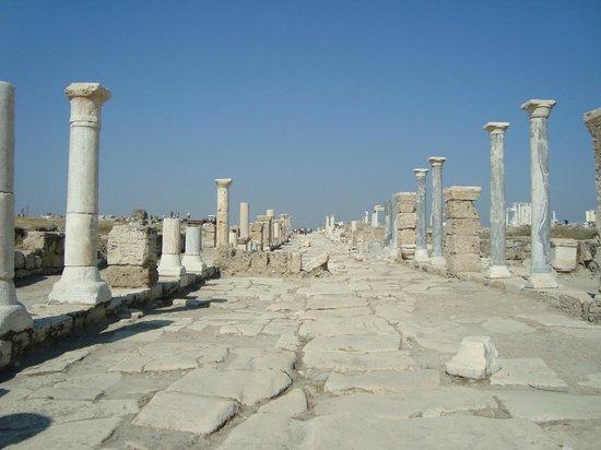 Anas Crecca Travel - Day Tours: Laodikéia