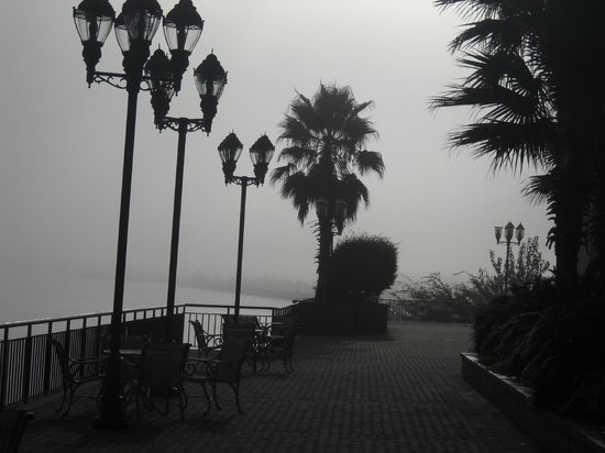 Savannah Marriott Riverfront : A view from the veranda on a foggy morning