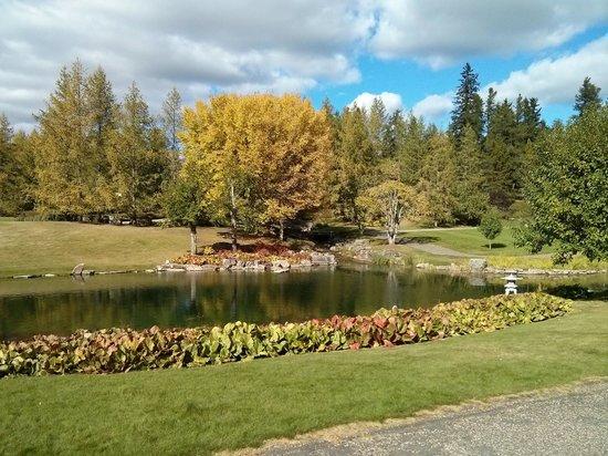 University of Alberta Botanic Garden: Japanese Garden