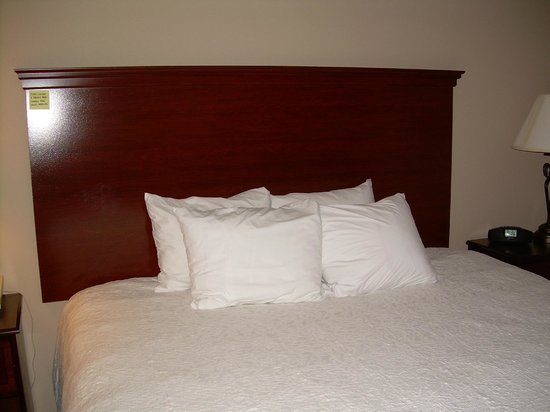 Hampton Inn Danville: Small, square bed pillows