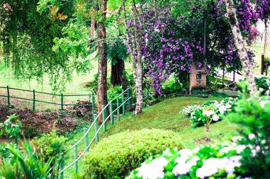 Pousada Villa Acauã : Área externa