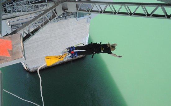 Auckland Bridge Bungy - AJ Hackett Bungy : Yeaaahaaa!