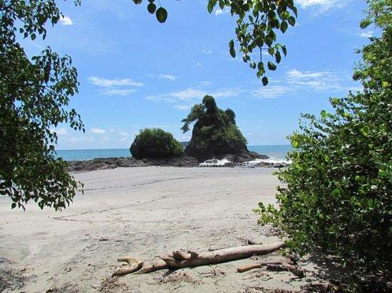 Farm of Life (Finca de Vida): National Park beach